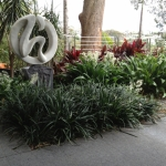 Sydney harbourside landscaping