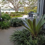 Mosman lower North Shore landscaping
