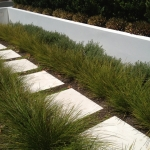 Sustainable paving and planting