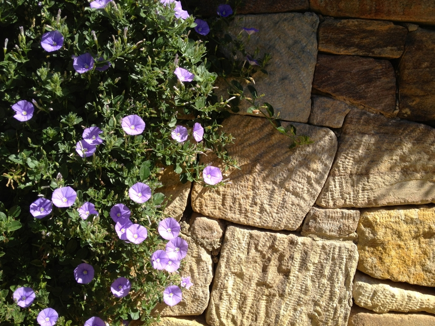 Dry stone wall landscapers